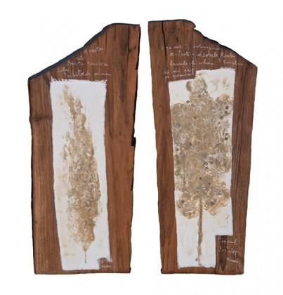 Usile Raiului,pigmenti cu emulsie,lemn de nuc,2x24x58cm,2015