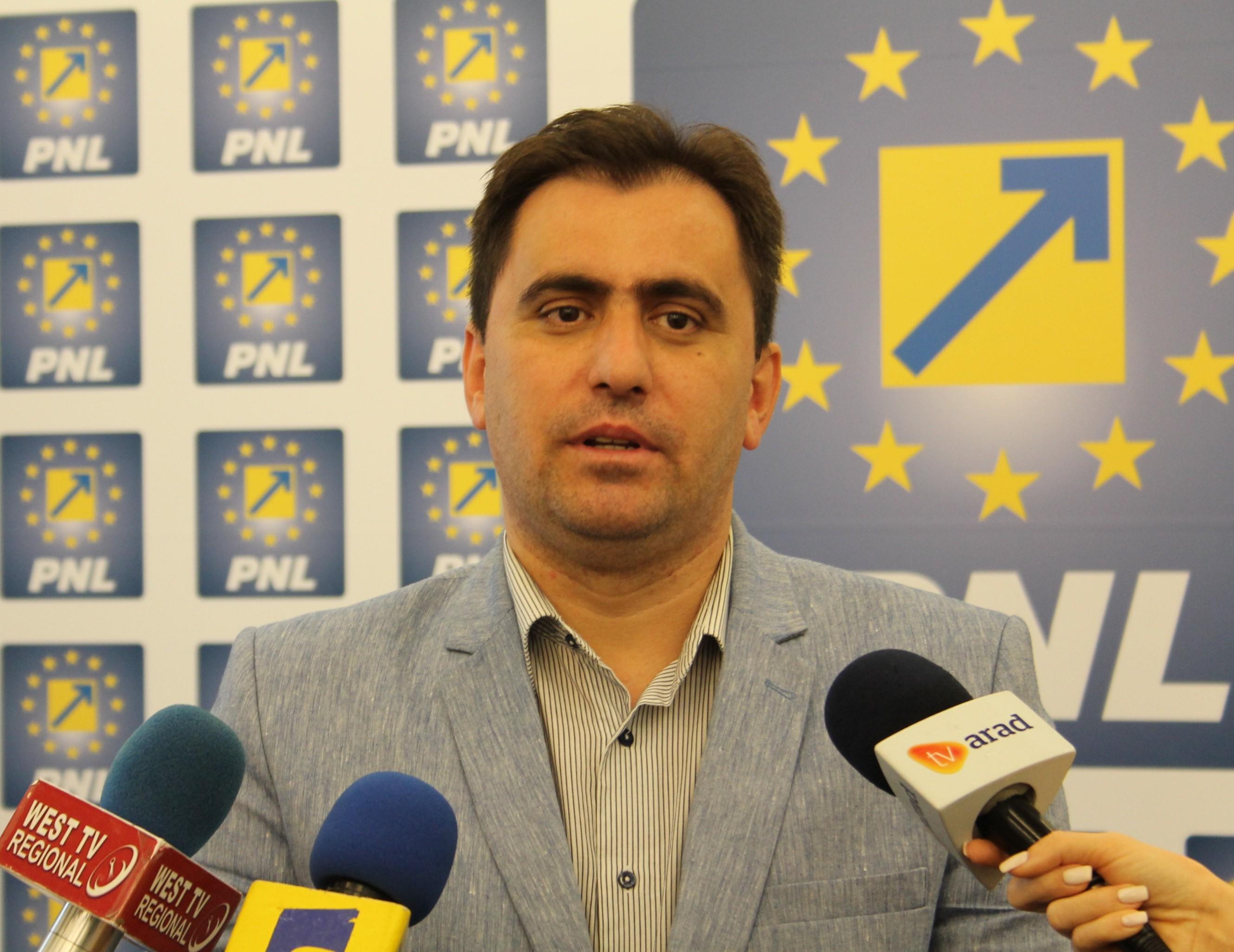 Senatorul Ioan Cristina le cere parlamentarilor de la PSD Arad să se delimiteze de Liviu Dragnea