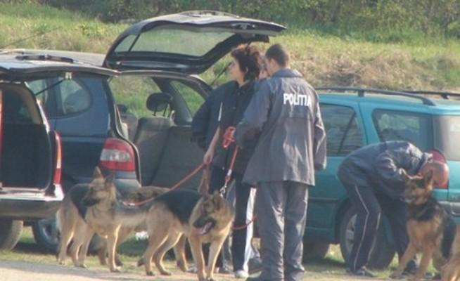 CRIMĂ/ O tânără a fost găsită MOARTĂ în pădure! Anchetatorii i-au găsit și mașina, abandonată în apropiere