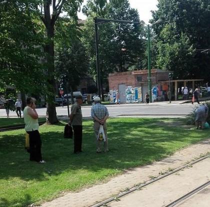 Orașul SE TOPEȘTE! Arădenii preferă umbra teilor în locul stațiilor de tramvai (FOTO)