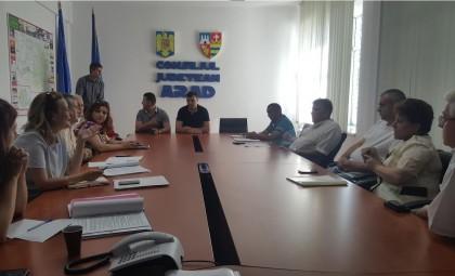 Consiliul Județean vrea să preia și să refacă cetățile Șoimoș, Șiria și Ineu