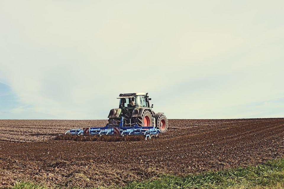 VERIFICĂRI în teren, atât în România, cât și în Germania, în SPRIJINUL românilor care muncesc ca lucrători sezonieri în agricultură