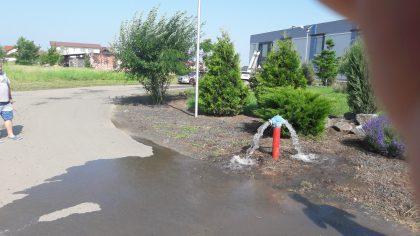 Reprezentanții Companiei de Apă Arad au verificat hidranții din Via Carmina. Ce au descoperit