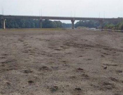 NEWS ALERT/ Căutări DISPERATE: Femeie DISPĂRUTĂ în zona râului Mureş (UPDATE)