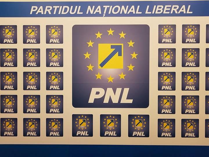 DC News: Primele opt nume de pe lista cu care PNL va candida la alegerile europarlamentare