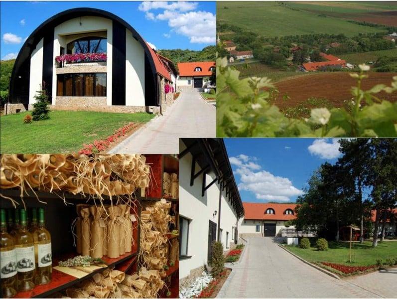 """Reîncepe """"Circuitul Cramelor"""": Prima degustare va avea loc la Casa Vinului Brici din Mâsca, în Podgoria Miniș"""