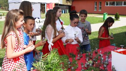 """Comuna Frumuşeni este de astăzi """"smart village"""""""