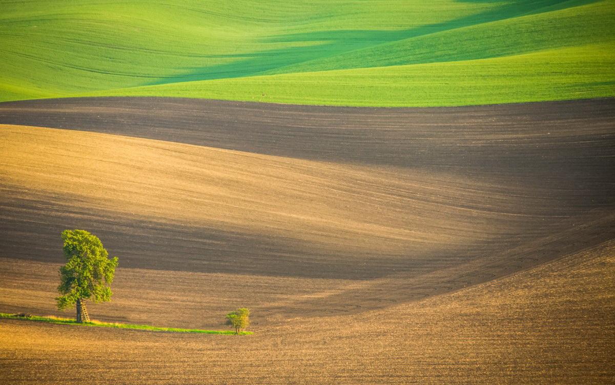 """Aproape 100 de fotografi din TOATĂ lumea au participat la Salonului Internațional de Fotografie """"Ars Fotografica"""" Arad. Vezi fotografiile PREMIATE (GALERIE FOTO)"""