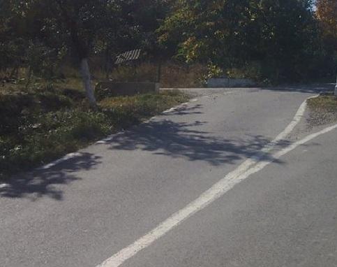 Ca la noi, la NIMENI! Se află FIX în mijlocul drumului, într-o localitate arădeană (FOTO)