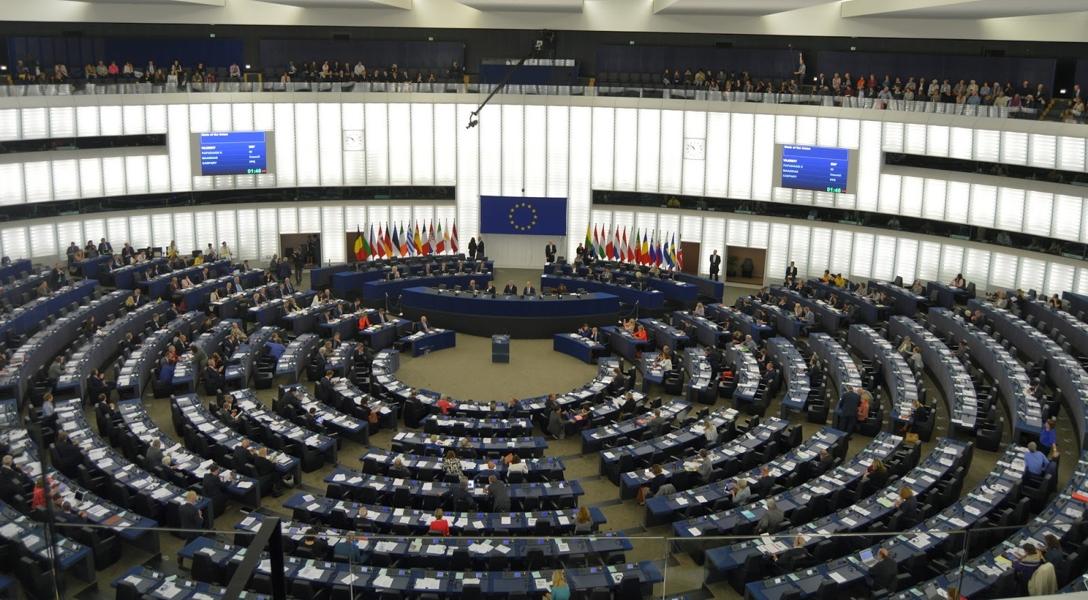 Uniunea vamală și achizițiile publice, în atenţia Parlamentului European