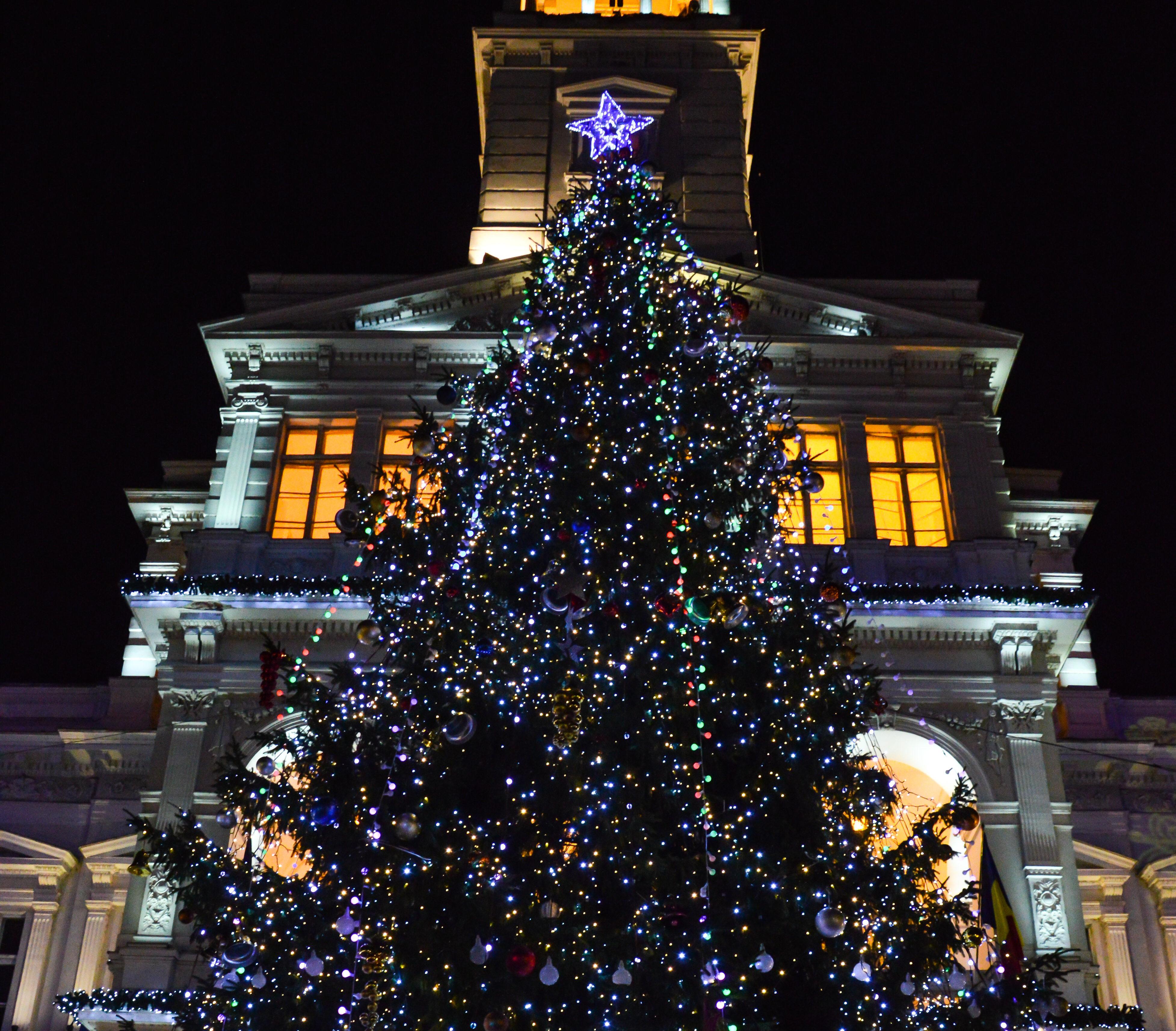 Beculețele din bradul înalt de 18 metri din fața Primăriei vor fi aprinse într-un cadru festiv