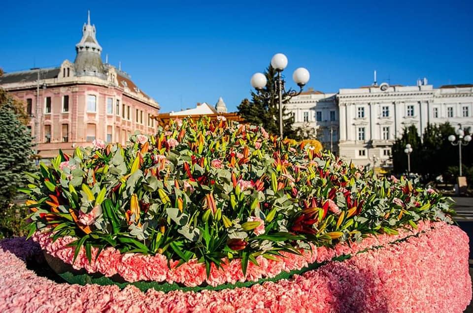 """Aradul se va umple de FLORI! Figurine din mii de flori, concerte și dansuri stradale – atracțiile evenimentului """"FlorAr"""""""