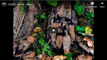 Trupa arădeană Corso, la primul videoclip: SECRET (VIDEO)