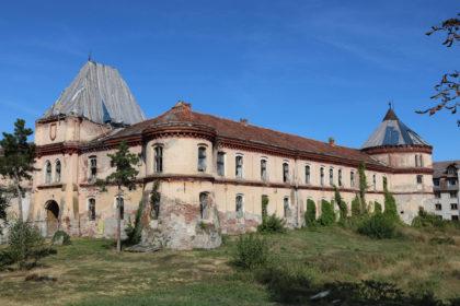 Descoperire EXCEPŢIONALĂ în Cetatea Ineului (GALERIE FOTO)