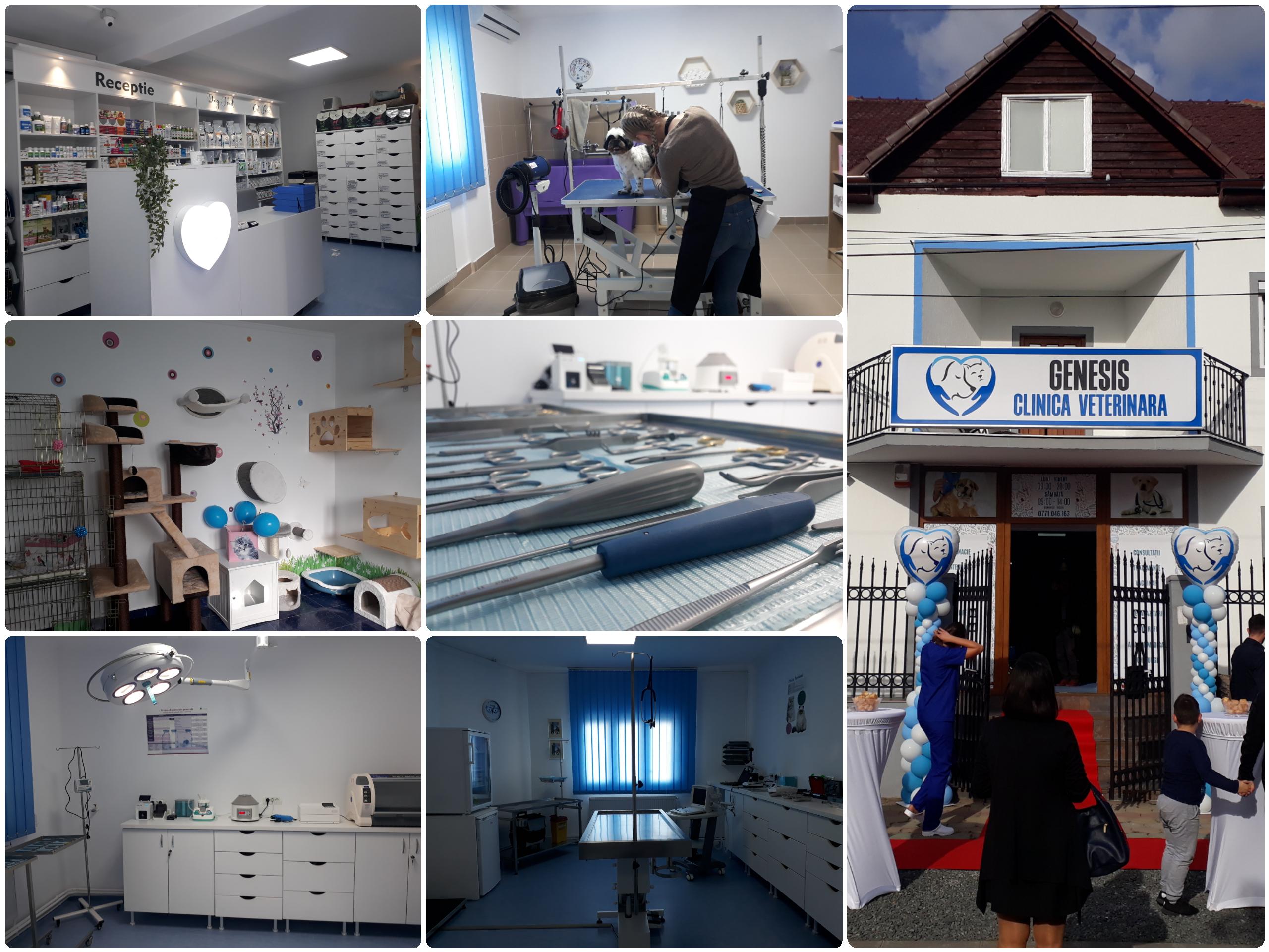 Clinica Veterinară Genesis şi-a deschis porțile! Un concept unic în Arad