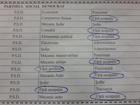 """Politică de CĂPĂTUIALĂ: Şase din 14 CANDIDAŢI ai PSD sunt """"fără ocupaţie"""""""