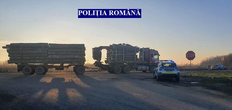 Transport ilegal de material lemnos, depistat pe DN7